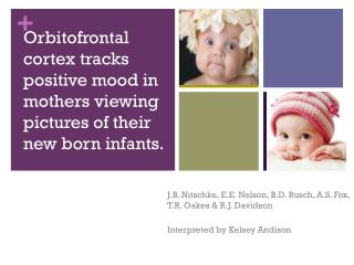Orbitofrontal cortex tracks positive mood in mothers viewing pictures of their new born infants.