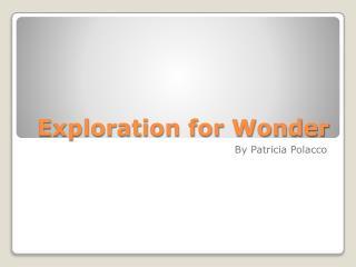 Exploration for Wonder