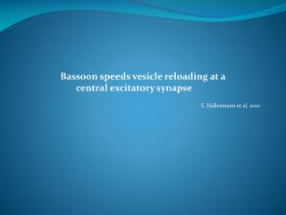 Bassoon speeds vesicle reloading  at a          central  excitatory synapse