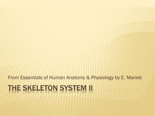 THE Skeleton System II