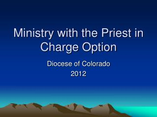 Ministry with the Priest in Charge Option