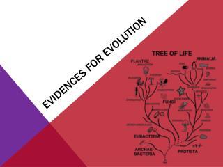 Evidences for Evolution