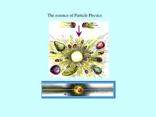 The essence of Particle Physics