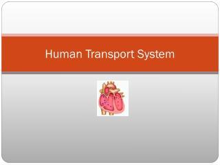 Human Transport System