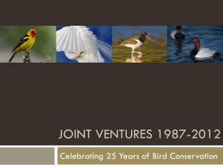 Joint Ventures 1987-2012