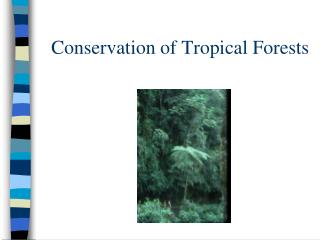 Conservation of Tropical Forests