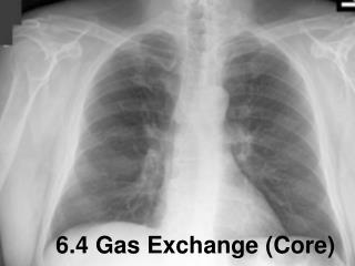 6.4 Gas Exchange (Core)