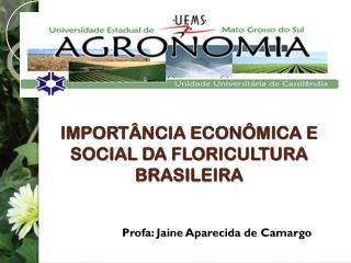 IMPORTÂNCIA ECONÔMICA E SOCIAL DA FLORICULTURA BRASILEIRA