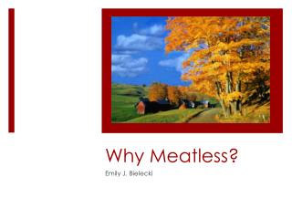 Why Meatless?
