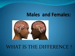 Males and Females :