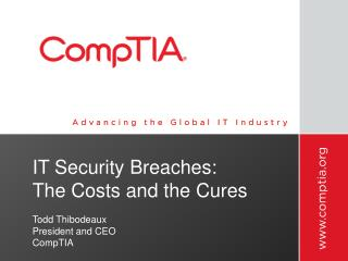 IT Security Breaches:  The Costs and the Cures