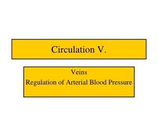 Circulation V.