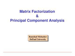 Matrix Factorization & Principal Component Analysis