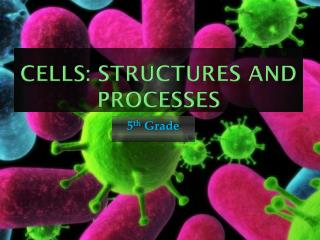 Cells: Structures and Processes