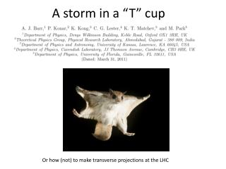 """A storm in a """"T"""" cup"""