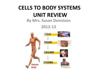 CELLS TO BODY SYSTEMS  UNIT REVIEW