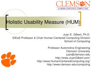 Holistic Usability Measure (HUM)