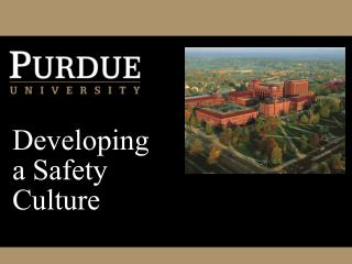 Developing a Safety Culture