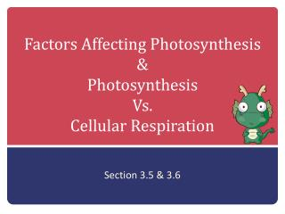 Factors Affecting Photosynthesis  & Photosynthesis  Vs.  Cellular Respiration