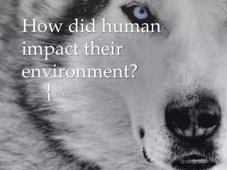 How did human impact their environment?