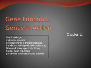 Gene Function:  Genes in Action