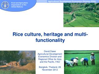 Rice  culture,  heritage and multi-functionality