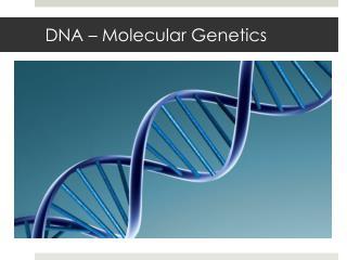DNA – Molecular Genetics