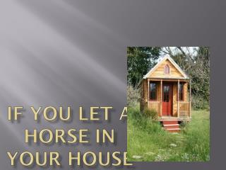 If you let a horse in your house