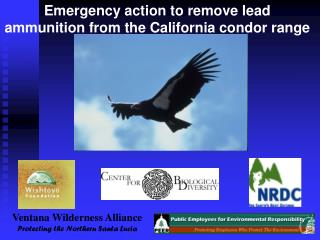 Emergency action to remove lead ammunition from the California condor range