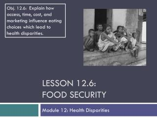 Lesson  12.6: Food Security