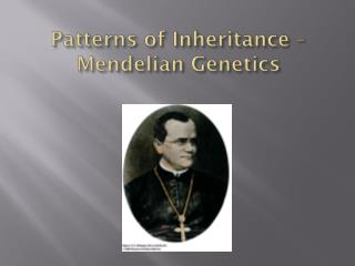 Patterns  of Inheritance –  Mendelian Genetics