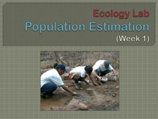Ecology Lab Population Estimation  (Week 1)