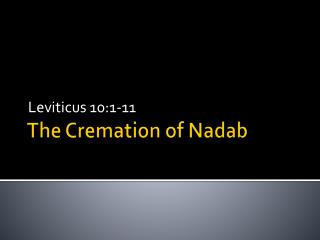 The Cremation of  Nadab