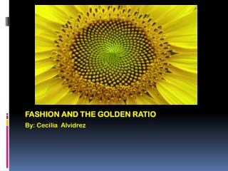 Fashion AND The Golden RATIO