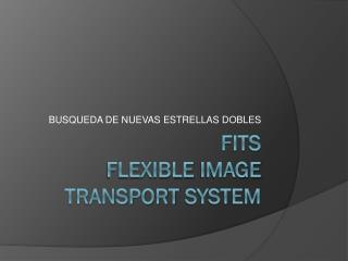 fits flexible  image transport system