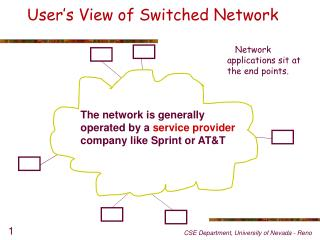 User's  View of Switched Network