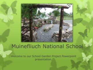 Muinefliuch National School