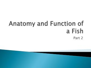 Anatomy and Function of a Fish