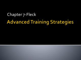 Advanced Training Strategies