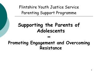 Flintshire Youth Justice Service  Parenting Support Programme