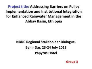 NBDC Regional Stakeholder Dialogue, Bahir  Dar, 23-24 July 2013 Papyrus Hotel