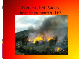Controlled Burns Are they worth it?
