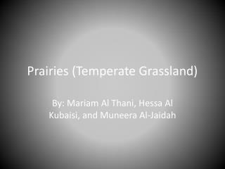 Prairies (Temperate Grassland)