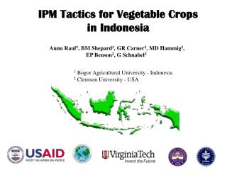 IPM Tactics for Vegetable Crops in Indonesia
