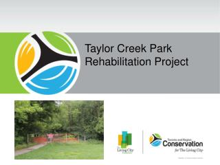 Taylor Creek Park Rehabilitation Project