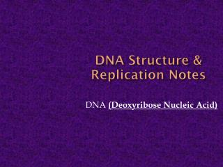 DNA Structure & Replication Notes
