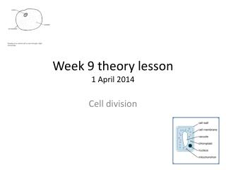 Week 9 theory lesson 1  A pril 2014
