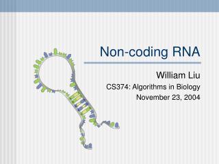 Non-coding RNA