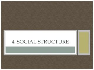 4. Social Structure