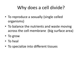 Why does a cell divide?